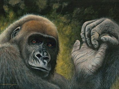 World premiere of a high-realist portrait of the Cross River gorilla