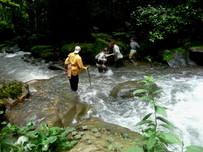 Crossing a river - Cross River Gorilla volunteer expedition