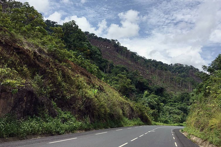 An animated look at the impacts of road development on deforestation in South West Cameroon